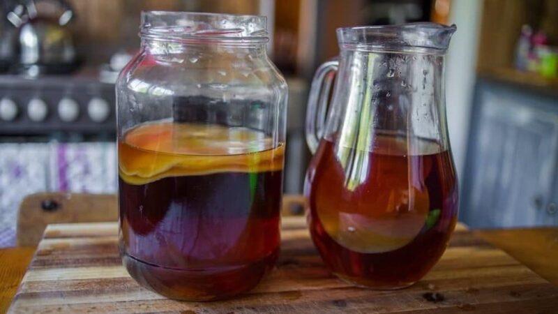 Как самостоятельно вырастить чайный гриб