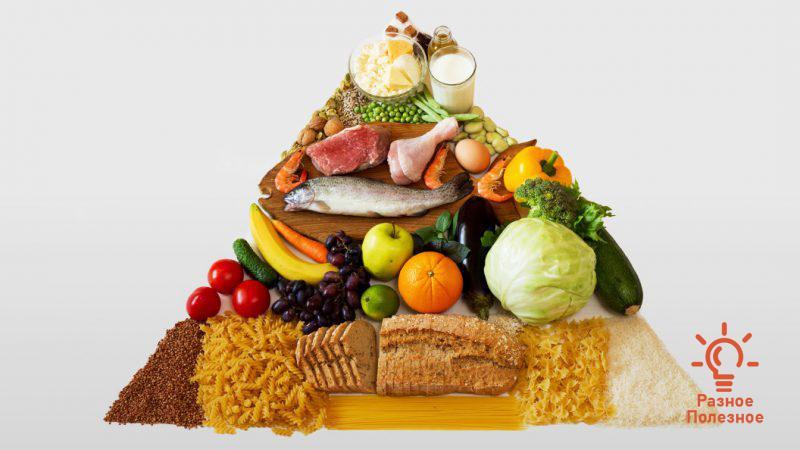Правильное питание – цели, функции и задачи. Рацион.