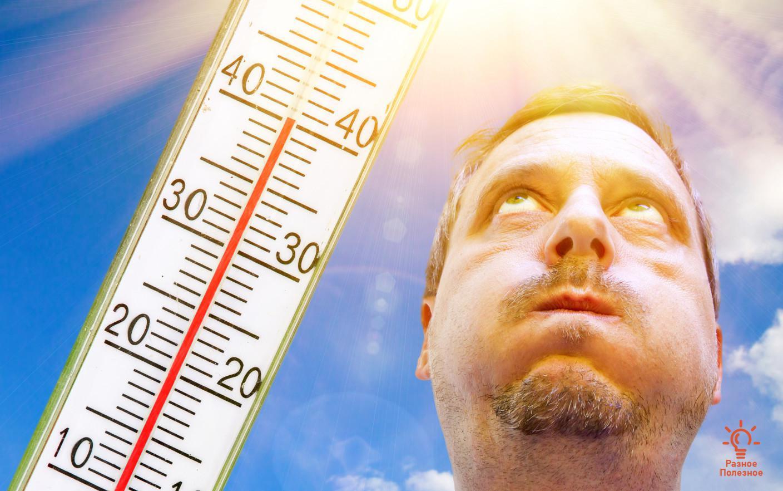 5 советов для тех, кто плохо переносит жару